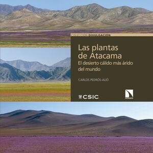 LAS PLANTAS DE ATACAMA : EL DESIERTO CÁLIDO MÁS ÁRIDO DEL MUNDO