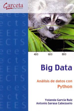 BIG DATA. ANALISIS DE DATOS CON PYTHON