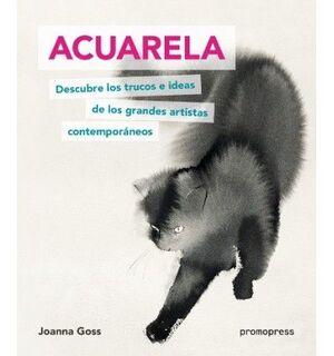 ACUARELA. DESCUBRE LOS TRUCOS E IDEAS DE LOS GRANDES ARTIST