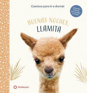 BUENAS NOCHES LLAMITA