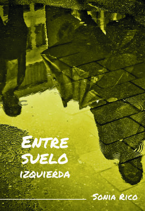ENTRESUELO IZQUIERDA